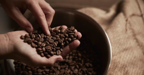 Is It Safe to Eat Coffee Beans? Benefits and Dangers